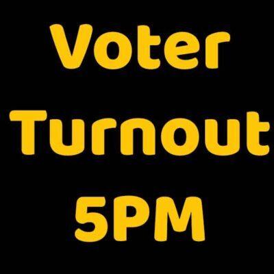 general election 2020 voter turnout